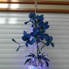 Ballon à emporter ( orchidée bleu)